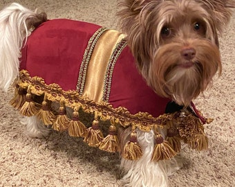 Custommade to order Beaver dog costume for your xsmall-medium size dog