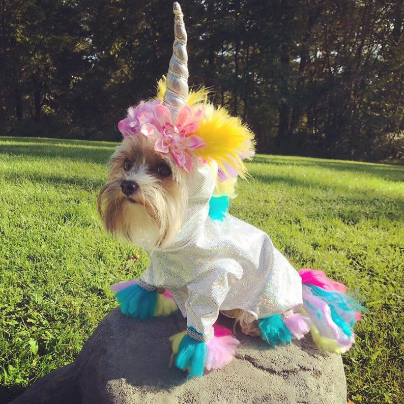 Magical unicorn dog costume perfect for Halloween
