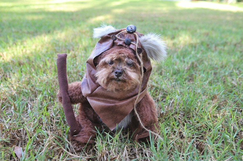 Adorable Furry Reddish Brown Woodland Halloween Costume for Dogs