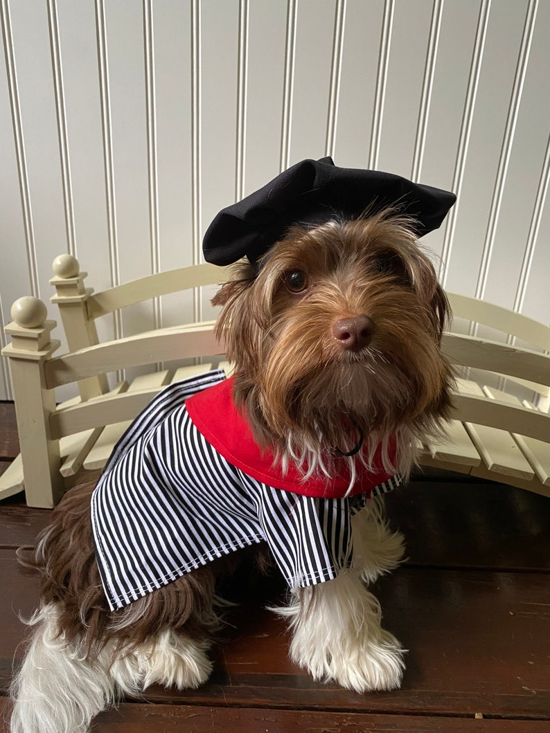 The Frenchman Cute Halloween Dog Costume size Large image 0