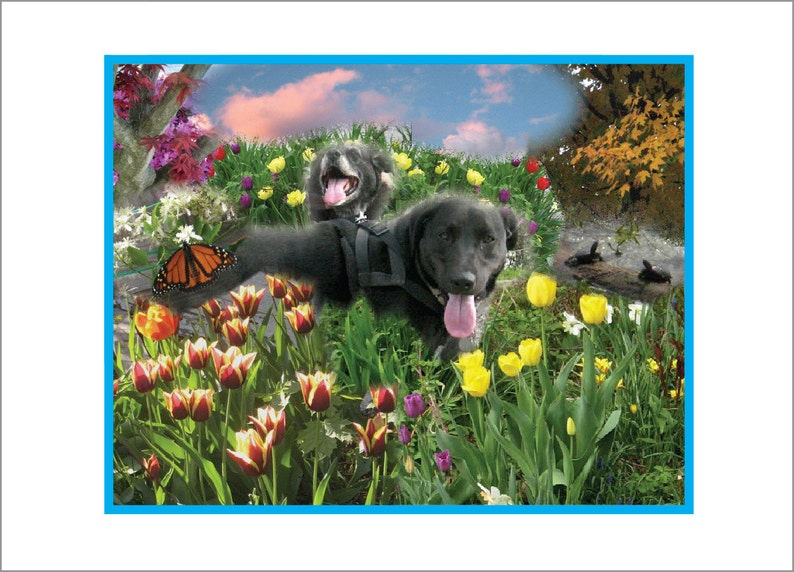 Happy Dogs in Magical Landscape or Magical Dogs in Happy image 0