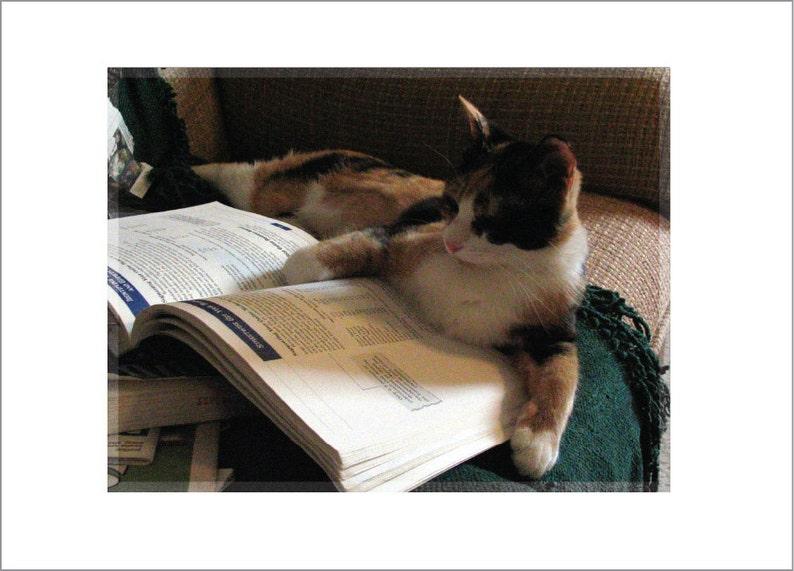 Studyin' image 0