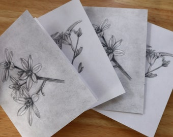 Summer Blossoms Blank Notecards Set of 4 - Pencil Drawing Prints