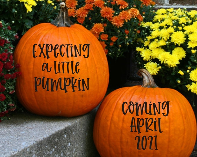 Pregnancy Pumpkin Decals Vinyl Decals for Fall Pregnancy Pumpkin Maternity Photo Shoot Photo Prop Expecting New Baby Decals for Pumpkins
