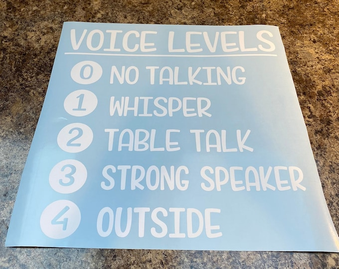 SALE PRICE Vinyl Decal Voice Levels Vinyl Decal for Classroom Management Clearance Priced Decal for Teacher Classroom School 16x 16 White