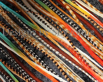 Bulk 25 Premium Natural and Color Mix Hair Feathers Extensions Make Your Own Bundles Kit Lot