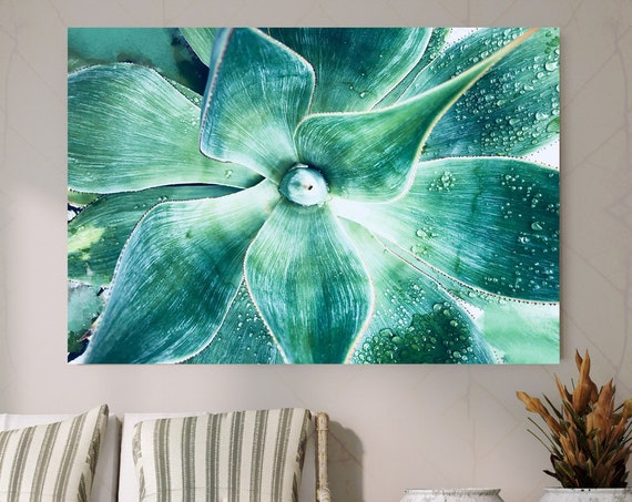 "Green Tropical Succulent Beauty 2. SUCCULENT Wall Art, Pale Green CANVAS Prints, Succulent Flower Artwork up to 72"" by Irena Orlov"