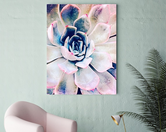 "Pink Succulent. Extra Large Pink Blue Succulent Canvas Art Print, Tropical Canvas Art Print  up to 72"" by Irena Orlov"
