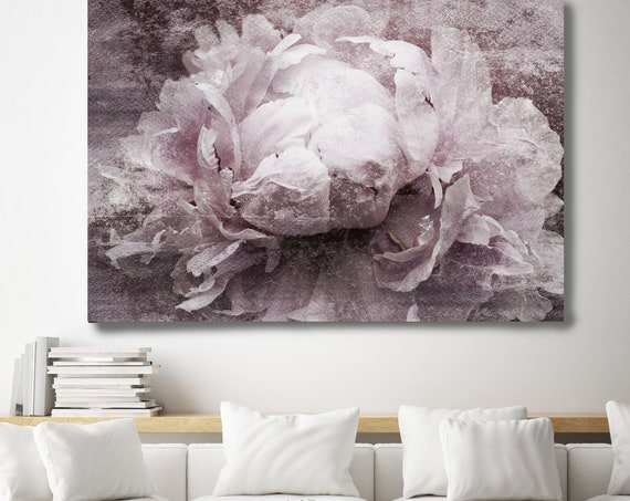 "Blush Peony, Shabby Pink Gray Rustic Peony, Shabby Chic Blush Peony Flower Hand Textured Canvas Art Print up to 72"" by Irena Orlov"