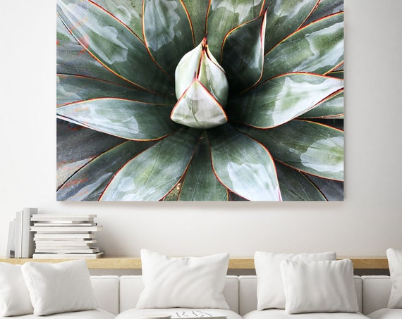 Green Tropical Star 1. SUCCULENT Wall Art, Pale Green CANVAS Prints, Succulent Print, Plant Print, Succulent Art Print, Botanical Print