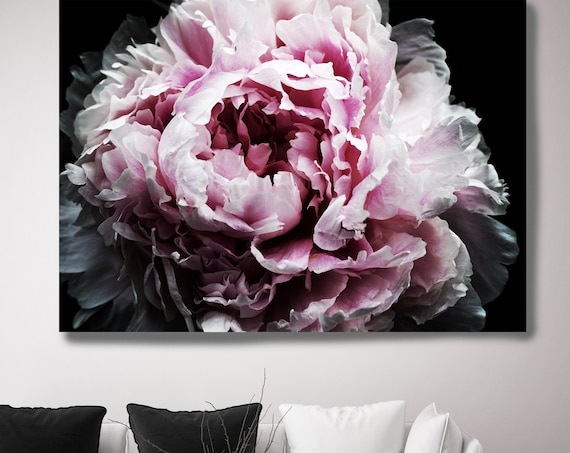 Peony Passion 2. Peony Photography Canvas Print, Modern Black Pink Gray Large Canvas Art Print, Modern Peony, Boho Peony  by Irena Orlov