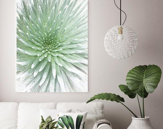 Haleakala Silverswords. unusual plant Wall Art, Pale Green CANVAS Prints, The Hawaiian silversword canvas print Irena Orlov