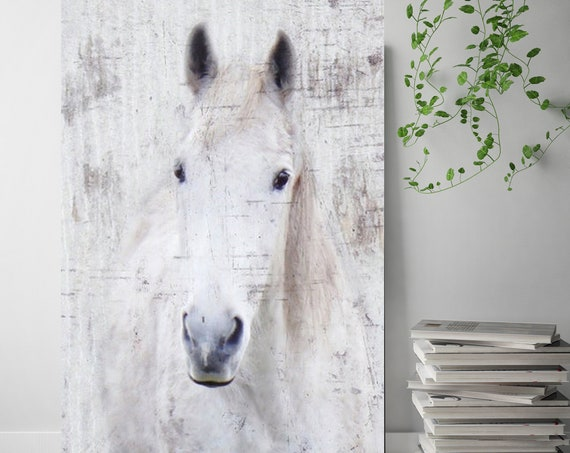 "White Western Horse Photographic Print. Extra Large Horse, White Grey Rustic Horse, Large Canvas Art Print up to 72"" by Irena Orlov"
