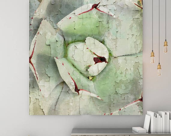 "Impressive Succulent. Large Green Succulent Canvas Art Print, Large Canvas Botanical Print up to 48""  by Irena Orlov"