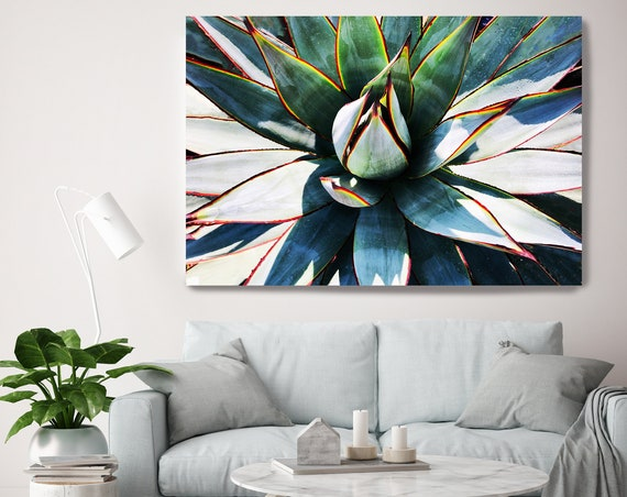 Green Garden Agave 2, Agave Wall Decor, Cactus print, Green Succulent Decor, Tropical Photography, Tropical Canvas Print