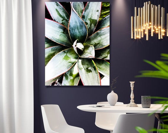 Green Garden Agave 1, Agave Wall Decor, Cactus print, Succulent Decor, Tropical Photography, Tropical Canvas Print