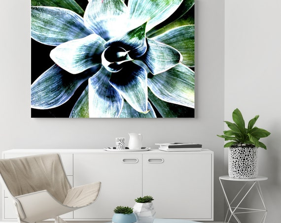 Succulent Perfection. Canvas Print by Irena Orlov