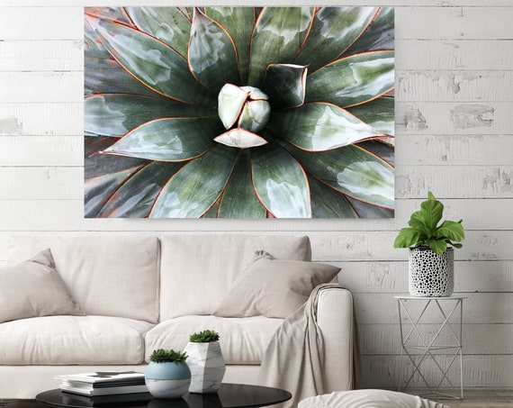 Green Tropical Star 4. SUCCULENT Wall Art, Pale Green CANVAS Prints, Succulent Print, Plant Print, Succulent Art Print, Botanical Print