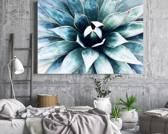 Tropical Star 1. SUCCULENT Wall Art, Blue CANVAS Prints, Succulent Print, Plant Print, Succulent Art Print, Botanical Print, Wall Print