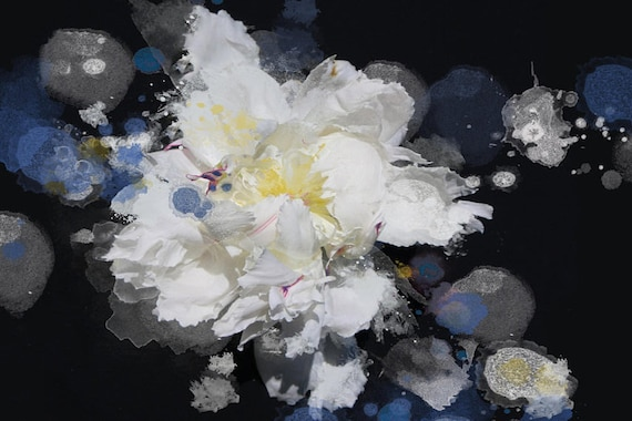 "Breathless 3, Floral Painting Print, Black Blue White Floral Art, Large Blue White Contemporary Canvas Art Print up to 72"" by Irena Orlov"