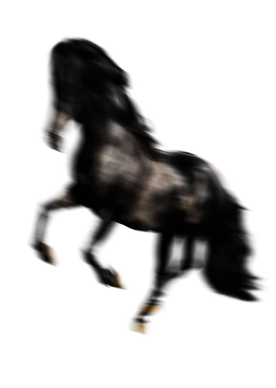 "Black Running Horse. Extra Large Horse Wall Decor, Black Contemporary Horse, Large Contemporary Canvas Art Print up to 72"" by Irena Orlov"