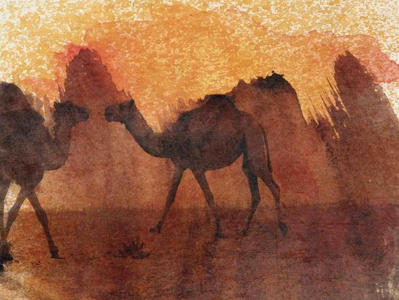 Two Camels. Canvas Print by Irena Orlov 24x36""