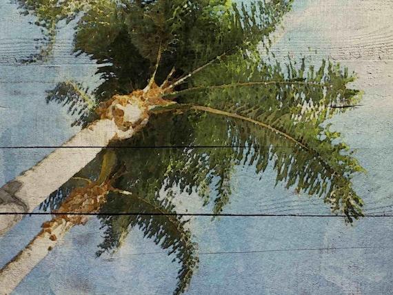 """Bay Palm. Canvas Print  24x36"""""""
