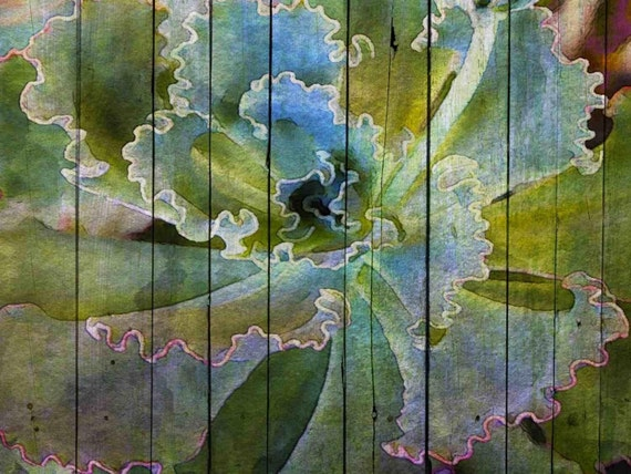 Blue Succulent. Canvas Print by Irena Orlov 36 x 24""