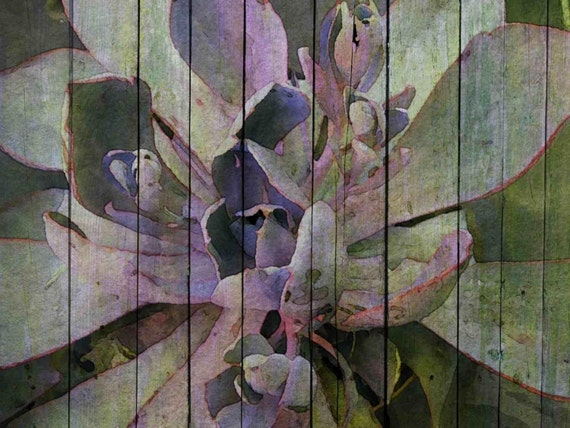 "Abundance. Canvas Print by Irena Orlov 24x36"""