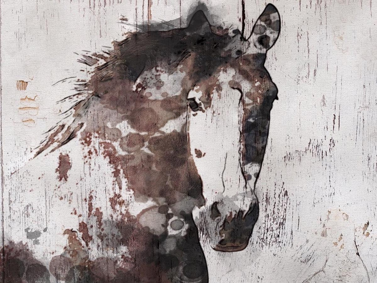 Gorgeous Horse. Horse Art Large Canvas, Horse Art, Brown Rustic Horse,  Rustic Vintage Horse Wall Art Print Up To 81 By Irena Orlov