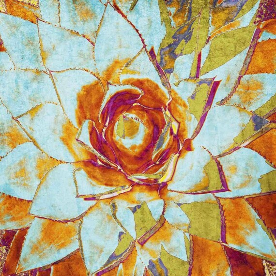 "Succulent Blossom II. Canvas Print by Irena Orlov 30x30"""