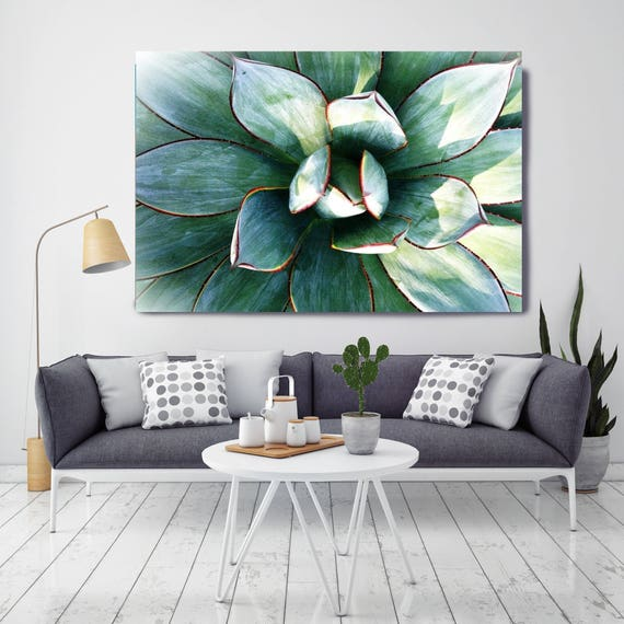 "Delicate Succulent. Extra Large Green Succulent Canvas Art Print up to 72"" by Irena Orlov"