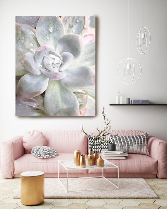 "Pastel Echeveria. SUCCULENT Wall Art, Pale Pink CANVAS Prints, Succulent Flower Artwork up to 72"" by Irena Orlov"