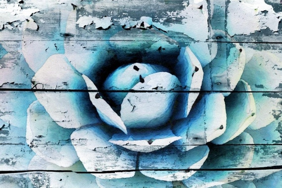 """Simply Agave. Extra Large Blue Rustic Canvas Art Print, Blue Succulent Agave Canvas Wood Planks Wall Art Decor up to 60"""" by Irena Orlov"""