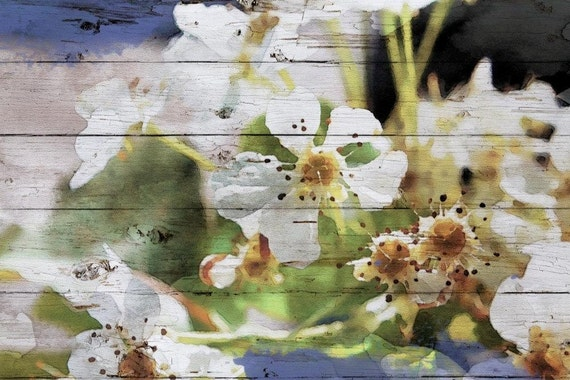 """In early March sunshine. Floral Painting, White Green Abstract Art, Abstract Colorful Contemporary Canvas Art Print up to 72"""" by Irena Orlov"""
