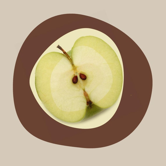 Apple. Canvas Print by Irena Orlov