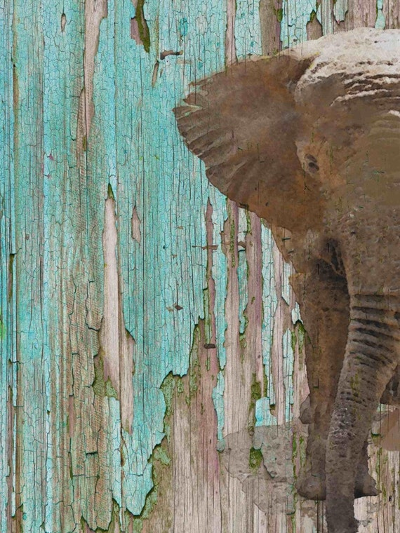 "The Elephant II. Canvas Print by Irena Orlov 24x36"""