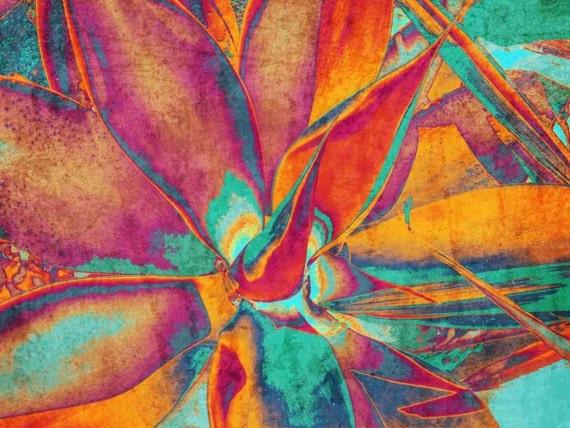 "Succulent Plant. Canvas Print by Irena Orlov 24x36"""