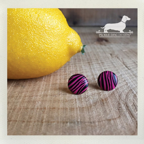 DOLLAR DEAL! Pink Zebra. Post Earrings