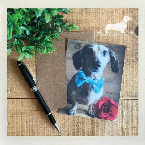 Valentine Doxie. Flat Card