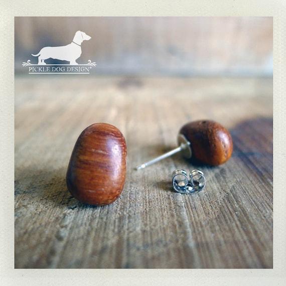 Cocoa Bean. Post Earrings