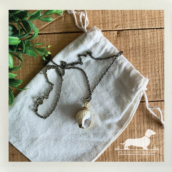 Shell. Necklace