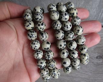 Dalmatian Jasper 10 mm Round Bracelet G218
