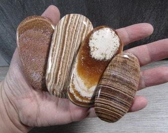 Aragonite Palm Stone E108