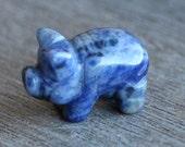 Sodalite Pig Stone Animal Figurine F119