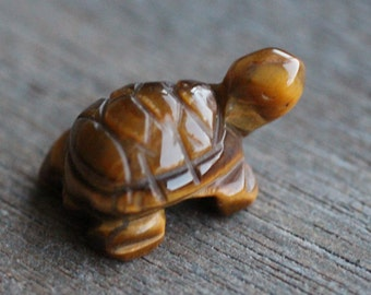 Tiger Eye Stone Turtle Figurine on Acrylic Base Collectibles