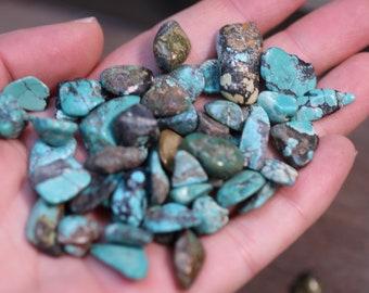 Turquoise Tiny Tumbled Stone T35
