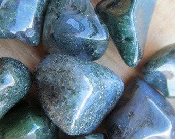Moss Agate Medium Tumbled Stones T13