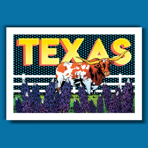 TEXAS - Longhorn and Bluebonnets Edition - 13x19 Art Print by Rob Ozborne