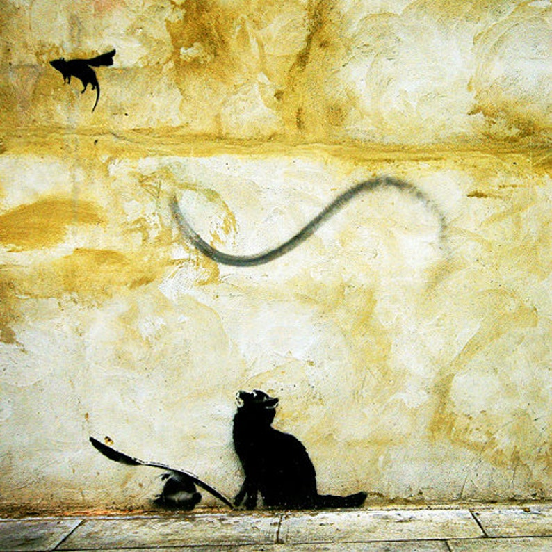BANKSY  Cat n Mouse ab 20x20cm Canvas Print image 0
